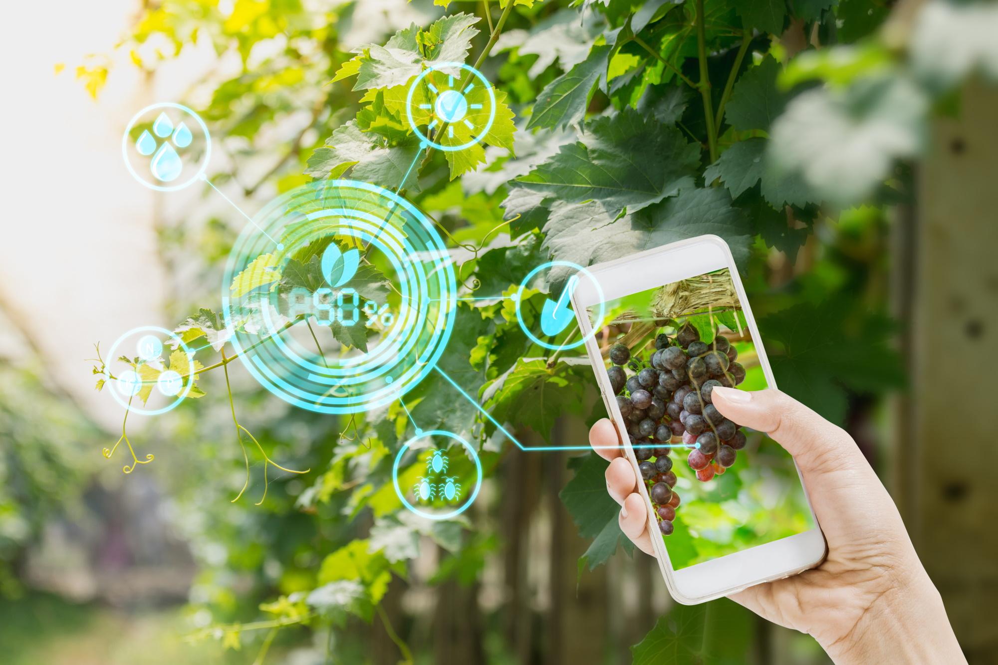 Jornada sobre las posibilidades que las tecnologías de Big Data e IA tienen aplicadas al sector del vino